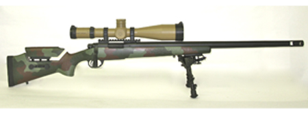 Custom M40 Variant