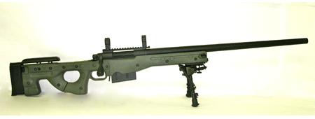 Custom MK13 Variant